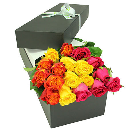 Stunning coloured rose box
