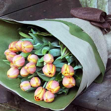 Tulip Tango Melbourne