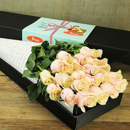 Two Dozen Long Stem Roses (Pale Pink) - Sydney Only