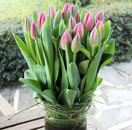 Vase of Tulips with Free Candle (Sydney Only)