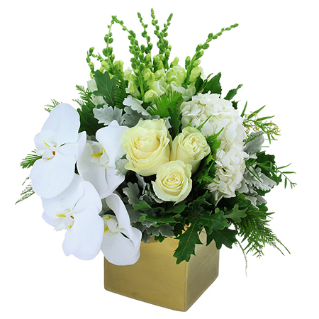 White Gold Boxed Flowers for Christmas Delivered in Sydney
