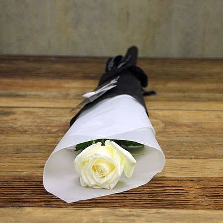 White Ribbon Day Long Stem Rose (Sydney Only)