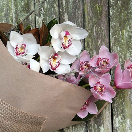 Winter Orchids with Free Candle (Sydney Only)
