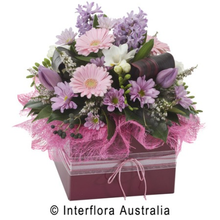 WS122 Audrey Lavish Box Arrangement