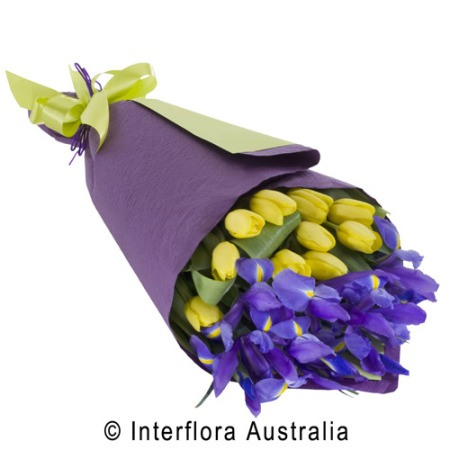 WS128 Tara Wrapped Cut Flowers