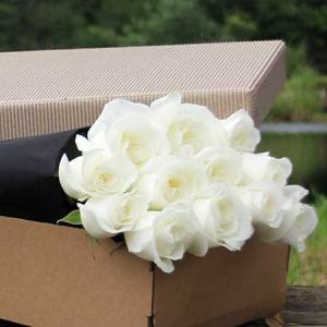 Flowers Usa : Australia Affordable Flower Delivery
