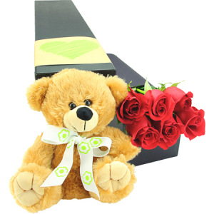 6 Long Stem Red Roses with Love Bear (Sydney Melbourne Brisbane Perth Only)