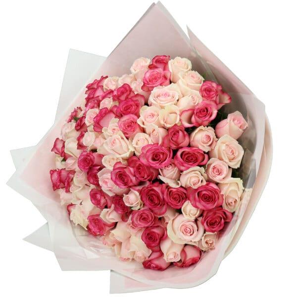 99 Dreamy Pink Rose Stems