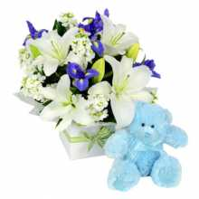 Baby Boy Flowers Small Box and Small Teddy