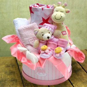 Baby Girl Hamper Medium Baby gift