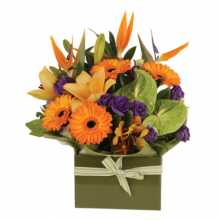 Expectant Mother Gift Basket : Australian Flower Delivery Service