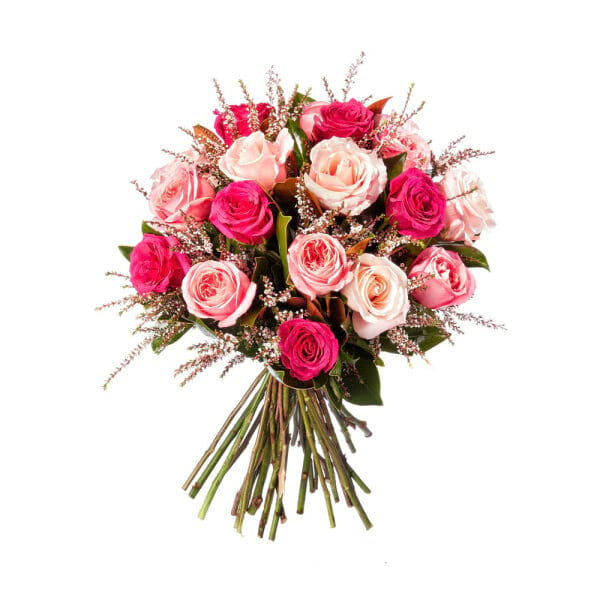 Cherry Pink Rose Posy