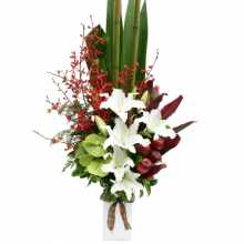 Florist Raymond Terrace : Australia Flower Delivery
