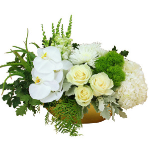 Elegant white flowers in a golden bowl delivered in Sydney for Christmas