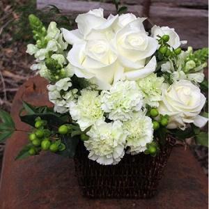 Baby Gift Australia : Australia Flowers Online