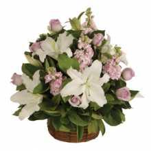 Florist In Subiaco : Australia Flowers Online