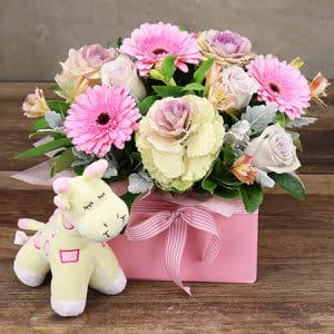 Cupcake Pink Baby Box