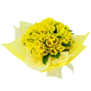 Daffodil Posy