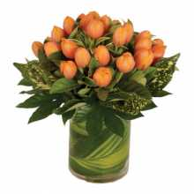 Flowers Online Cheap : Australia Flower Delivery Brisbane