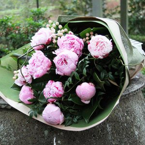 Dutch Pink Peonies and Pink Roses in Winter