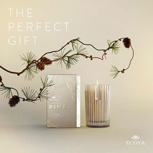 Ecoya Fresh Pine Needles Candle or Reed Diffuser