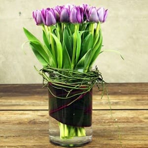 For Daring Mums Purple Tulips for Mothers Day