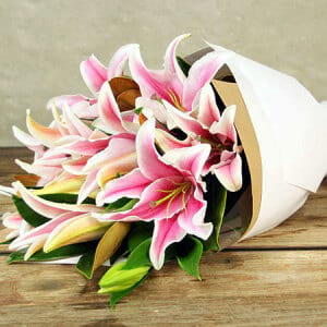For Lily-Loving Mums