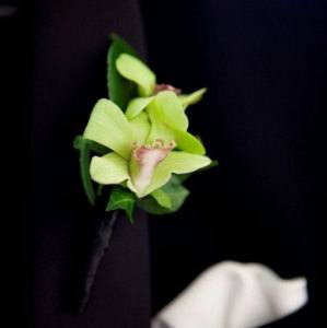 Green Singapore Orchid Buttonhole