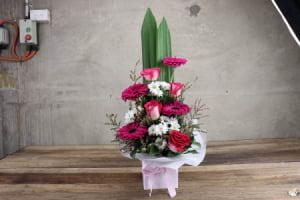 HOS-PWBOX - Pink and White Box