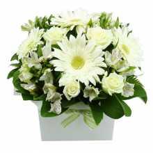 Flowers Delivered Brisbane : Australian Flower Delivery Sydney