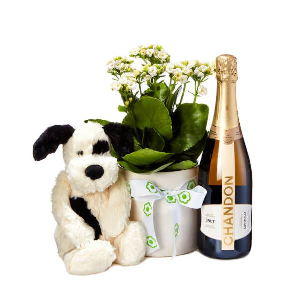 Valentines Day Red Roses with Chandon Sparkling Wine