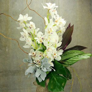 Luscious Winter Orchid Vase