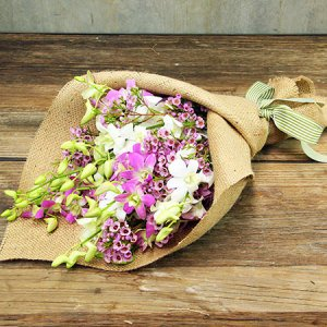 Lush Orchid Posy Special Offer