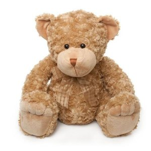 Medium Brown Teddy (approx. 22cm)