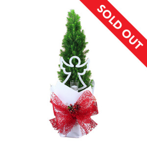 Fresh Mini Xmas Tree with Angel Candle Holder Decoration Delivered in Sydney