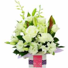 Flowers Send Online : Australia Flower Delivery