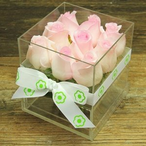 Pale Pink Rose Cube Flowers Delivered Sydney