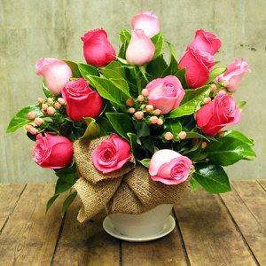 Paris pink roses