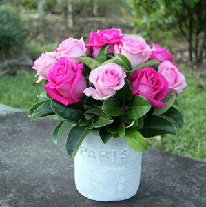 Paris Pink Roses with Free Candle (Sydney Only)