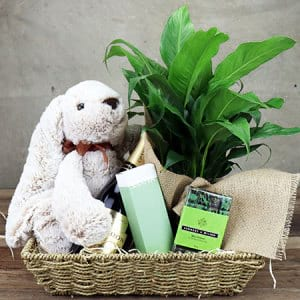 Peppermint Dream Gift Hamper