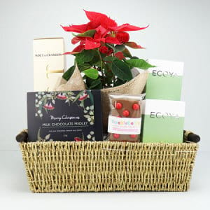 Poinsettia and Moet Christmas Hamper