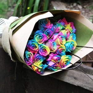 Rainbow Roses Delivered