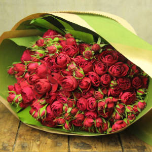 Red Rose Bouquet - Flowers for Everyone