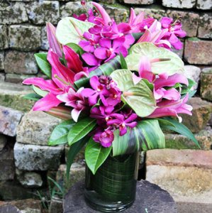 South Pacific Exotic Flowers