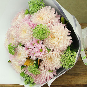 Giant Disbud Chrysanthemum Flower Bouquet Delivered