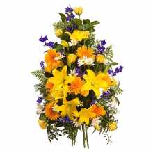Chrysanthemums Flowers : Australia Flower Delivery Sydney
