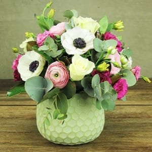 Sweet As Spring Honeycomb Pot of Pastel Blooms Delivered in Sydney