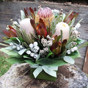 Chocolate Bouquets Canberra : Australia Flower Delivery Melbourne