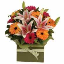 Bouquet Of Sunflowers : Australian Flower Delivery Service