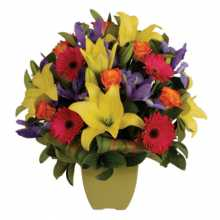 Florist Greenwood : Affordable Flower Delivery Australia